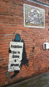 "Stencil: ""Evolution - You´re doing it wrong"" - irgendwo in Neuseeland"
