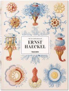 Kunst und Wissenschaft Ernst Haeckels || Hrsg.: Rainer Willmann, Julia Voss